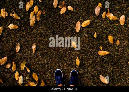 ... Selfie di piedi con scarpe da corsa sul pavimento di erba con foglie  coperta nel parco 9ce814d24a1