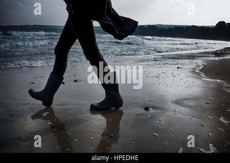 Fiore darkpretty in campagna Foto Stock