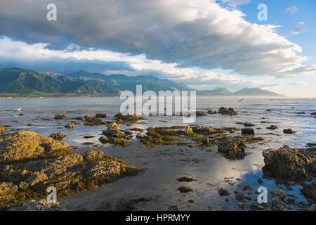 Kaikoura, Canterbury, Nuova Zelanda. Vista dalla costa rocciosa attraverso bay per le cime frastagliate di Kaikoura Seaward gamma, la mattina presto. Foto Stock