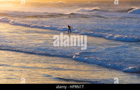 Dunedin, Otago, Nuova Zelanda. Lone surfer cavalcando le onde dell'Oceano Pacifico su St Clair Beach Sunrise, golden Foto Stock