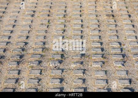 Griglia di calcestruzzo che è parte di un viale di ingresso Foto Stock