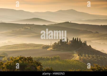 L'Italia, Toscana, Siena distretto, Val d'Orcia, classificato come patrimonio mondiale dall' UNESCO, Podere Belvedere nei pressi di San Quirico d'Orcia