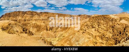 Judaean deserto vicino al Mar Morto - Israele Foto Stock