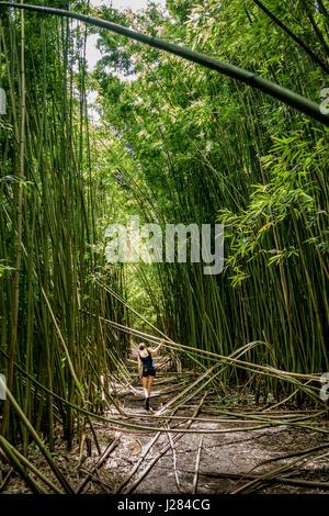 Vista posteriore della donna che cammina sul campo tra gli alberi nelle foreste Foto Stock