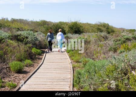 Stati Uniti, California, Oso Flaco parco statale, parte dell Oceano Dune SVRA (Stato Vehicular Recreation Area). Foto Stock