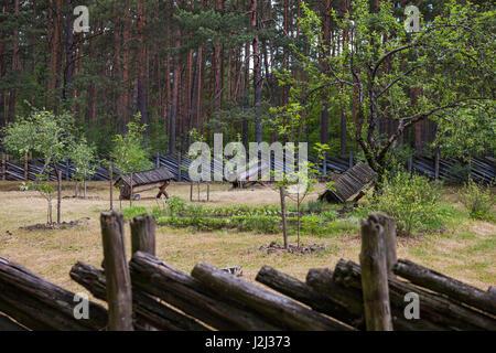 Vecchio legno antiche arnie in campagna Lettone Foto Stock