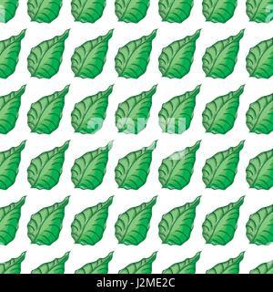 Green carino botanica lascia lo sfondo