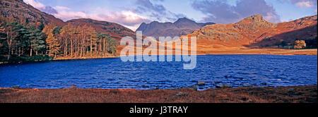 Un autunno dorato mattina all'iconico Blea Tarn nel Lake District Cumbria con le colline e Langdale Pikes in background Foto Stock