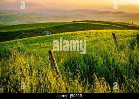 Val d'Orcia in Italia la provincia Toscana Europa Foto Stock