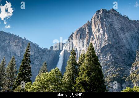 Grande Cascata in Yosemite Park con alberi in primo piano Foto Stock