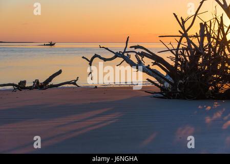 Un colorato sunrise al cimitero sulla Spiaggia Grande Isola di Talbot nel nord-ovest della Florida. (USA) Foto Stock