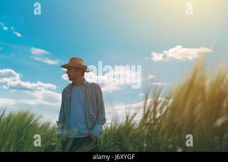 Coltivatore a piedi attraverso un verde campo di grano su windy giornata di primavera e di esaminare le colture Foto Stock