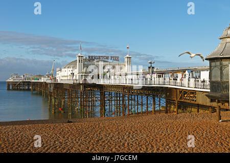 Palazzo di Brighton Pier e Brighton East Sussex, England, Regno Unito Foto Stock