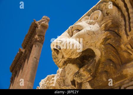 Lion e il Tempio di Giove sei colonne corinzie , Baalbek Foto Stock