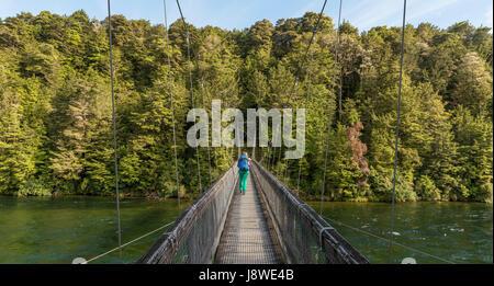 Escursionista femmina attraversando ponte di sospensione, Waiau river, Keplero via, Parco Nazionale di Fiordland, Foto Stock