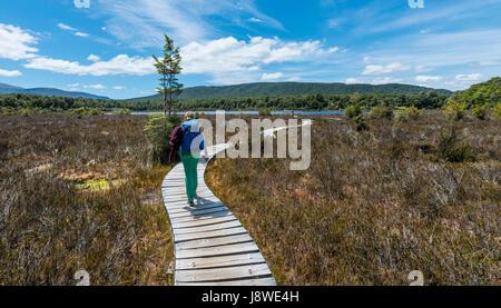 Escursionista femmina attraversando la palude, Keplero via, Parco Nazionale di Fiordland, Southland, Isola del Sud, Foto Stock
