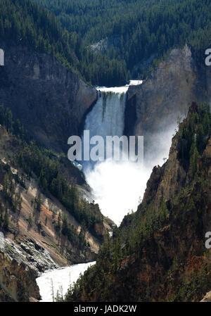 Vista dal punto di artisti di cascate Inferiori sul fiume Yellowstone nel Grand Canyon di Yellowstone National Park Foto Stock