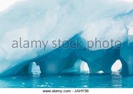 Un iceberg blu con archi naturali a Brown Bluff. Foto Stock