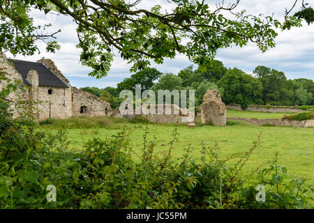 Rovine medievali di Quarr Abbey, Isle of Wight, Regno Unito Foto Stock