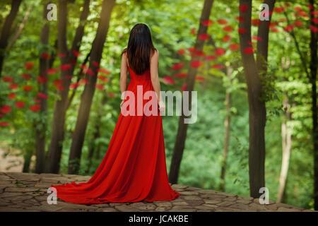 Ragazza torna a noi in piedi nei boschi a bordo di un precipizio. Nel suo vestito rosso. Foto Stock