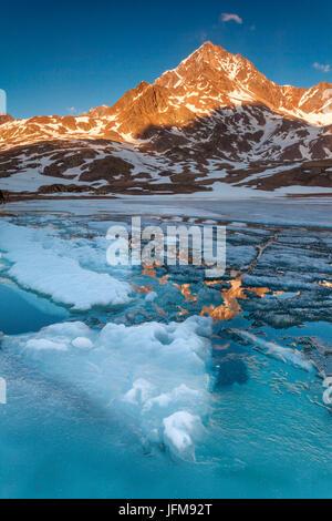 Passo Gavia, Parco Nazionale dello Stelvio, provincia di Sondrio, Lombardia, Italia, Tre Signori picco è riflessa al lago bianco al tramonto