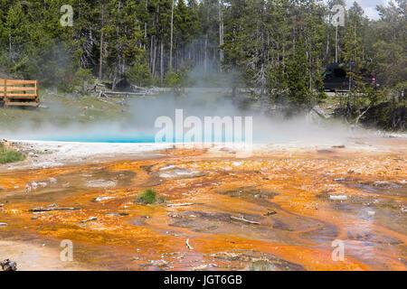 Silex la molla nella parte inferiore Geyser Basin come si vede dalla fontana Paintpot Trail e il Parco Nazionale di Yellowstone Foto Stock