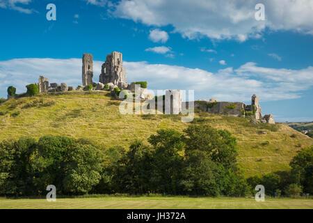 Rovine di Corfe Castle vicino a Wareham, Isle of Purbeck, Dorset, Inghilterra