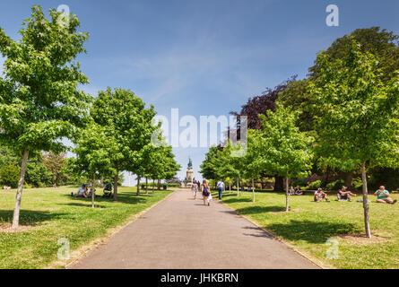 21 Giugno 2017: Exeter Devon, Inghilterra, Regno Unito - Avenue di treees in Rougemont giardini, guardando verso Foto Stock