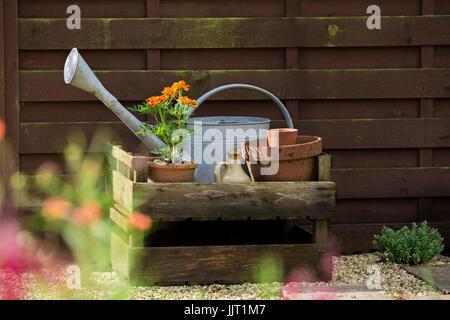 Fiori e vasi in un giardino cottage. Foto Stock