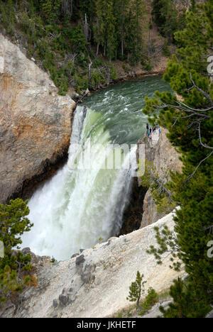 Le cascate Inferiori dal di sopra, il Parco Nazionale di Yellowstone, Wyoming USA Foto Stock