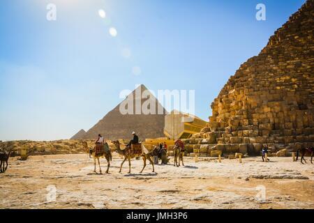 Cavalcare i cammelli vicino alle piramidi Foto Stock