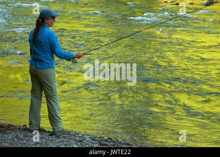 La pesca a mosca il fiume di Lewis lungo il fiume di Lewis Trail, Gifford Pinchot National Forest, Washington Foto Stock