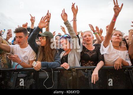 Gli appassionati di musica a Hylands Park,Chelmsford,Essex Domenica,20 Agosto a questo anni V Festival. Foto Stock