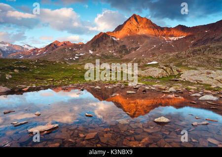Passo Gavia, provincia di Sondrio, Parco Nazionale dello Stelvio, Lombardia, Italia. Il Corno di Tre Signori si riflette in una piccola pozza.