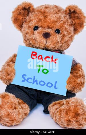 Simpatico orsacchiotto tenendo un cartello blu che dice che si torna a scuola isolata su uno sfondo bianco Foto Stock