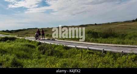 Famiglia passeggiate sul lungomare nel paesaggio, Inverness, mabou, Cape Breton Island, Nova Scotia, Canada Foto Stock