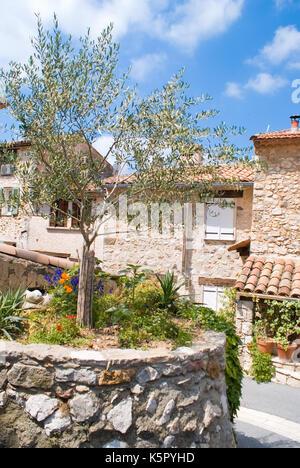Villaggio di Tourtour in riviera (Francia) Foto Stock