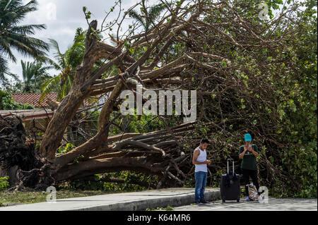 Miami, Stati Uniti d'America. Undicesimo Sep, 2017. miami beach abitanti di ritorno da pensiline dopo l uragano Foto Stock