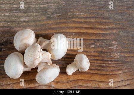 Fungo Champignon isolato su sfondo di legno Foto Stock