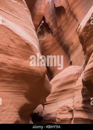 Naturale alla ricerca della tomaia Antelope Canyon, route 98, Arizona, AZ, Stati Uniti d'America: vista all'interno Foto Stock