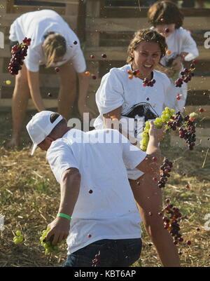 Crimea, Russia. Trentesimo Sep, 2017. la gente buttare uva ad ogni altra al winefest vendemmia e vinificazione festival Foto Stock
