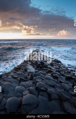 Colonne di basalto della costa al tramonto, Giant's Causeway, County Antrim, Irlanda del Nord, Regno Unito