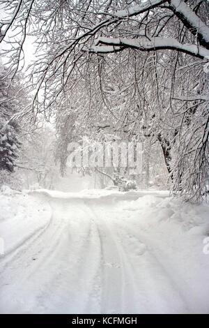 Neve profonda crea un meraviglioso mondo invernale a seguito di una bufera di neve. Foto Stock