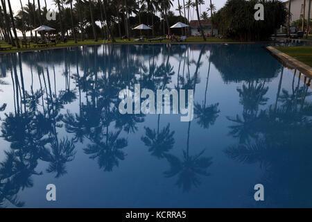 Acqua Blu Hotel Wadduwa provincia occidentale dello Sri Lanka riflessioni di Palme in piscina Foto Stock