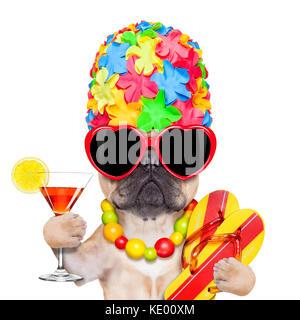 Fawn bulldog francese cane pronto per le vacanze estive o vacanze, indossando occhiali da sole e avente un cocktail, Foto Stock