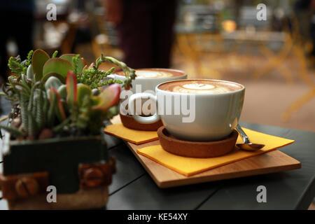 Piatto bianco caffè con piante succulente sul tavolo. Foto Stock