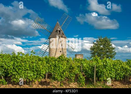 Francia, Gironde, montagne, mulini a vento di calon figurante nell'AOC st georges-St Emilion vigna Foto Stock