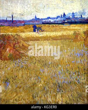 Le trinciacaricatrici 1888 Vincent Van Gogh (1853 -1890) Olandese Paesi Bassi Foto Stock