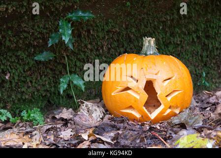 Immagine Zucca Di Halloween 94.Creepy Zucca Di Halloween Con Tagliare Fuori Gli Insetti Sul Terreno