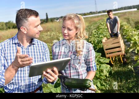 Istruttore di allevamento con apprendista nel settore agricolo Foto Stock